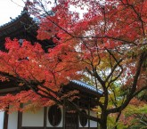30.井山宝福寺1