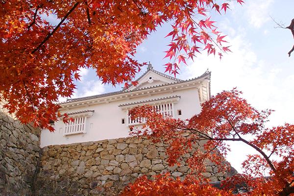㈷津山城(鶴山公園)
