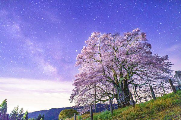 daigo_01