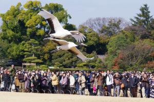 01 Okayama Korakuen Early Spring Festival1