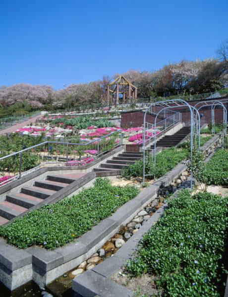 半田山植物園-09
