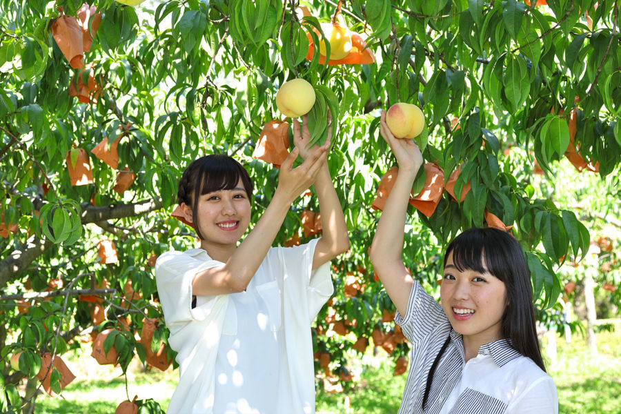 ★桃狩り-005_R