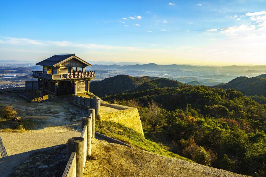 Kinojo Castle 4