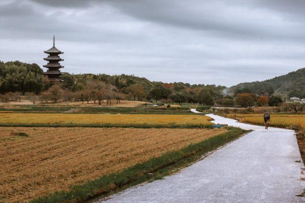 kokubunji (3)